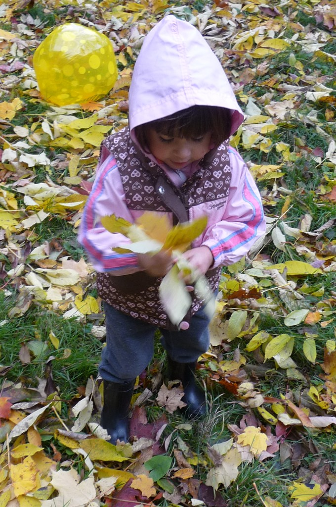 M gathers leaves