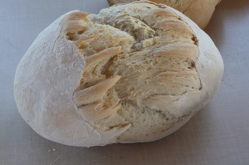 bread close up