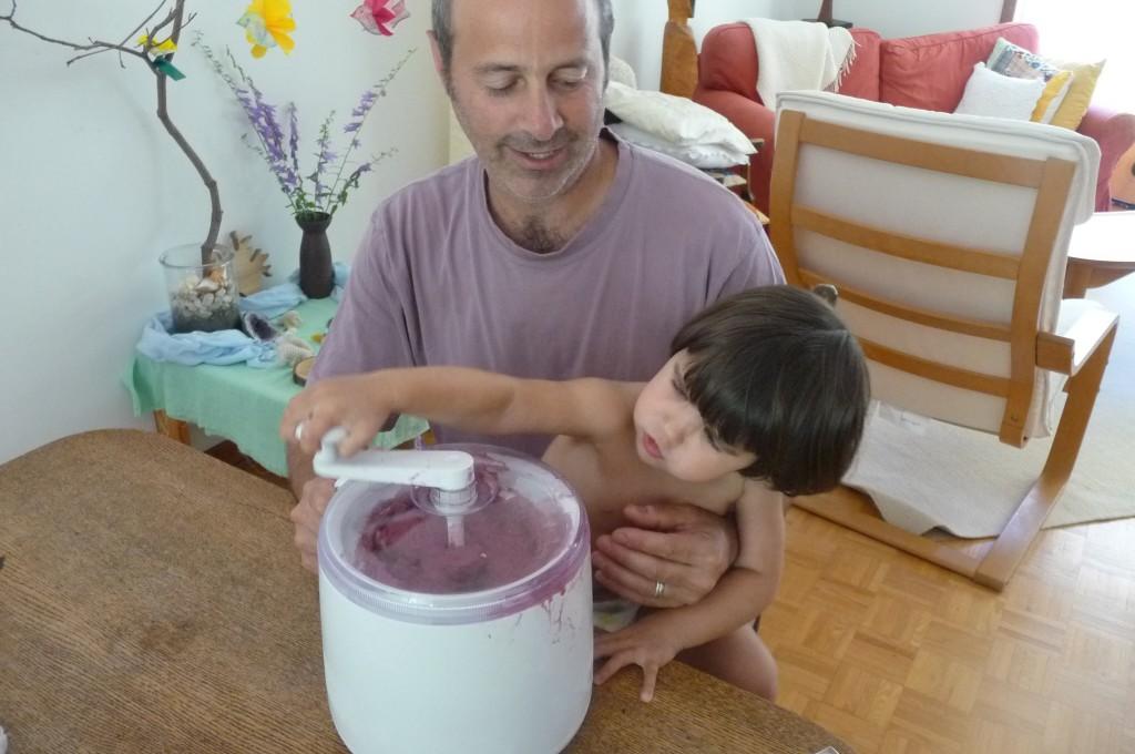 Wild raspberry ice cream