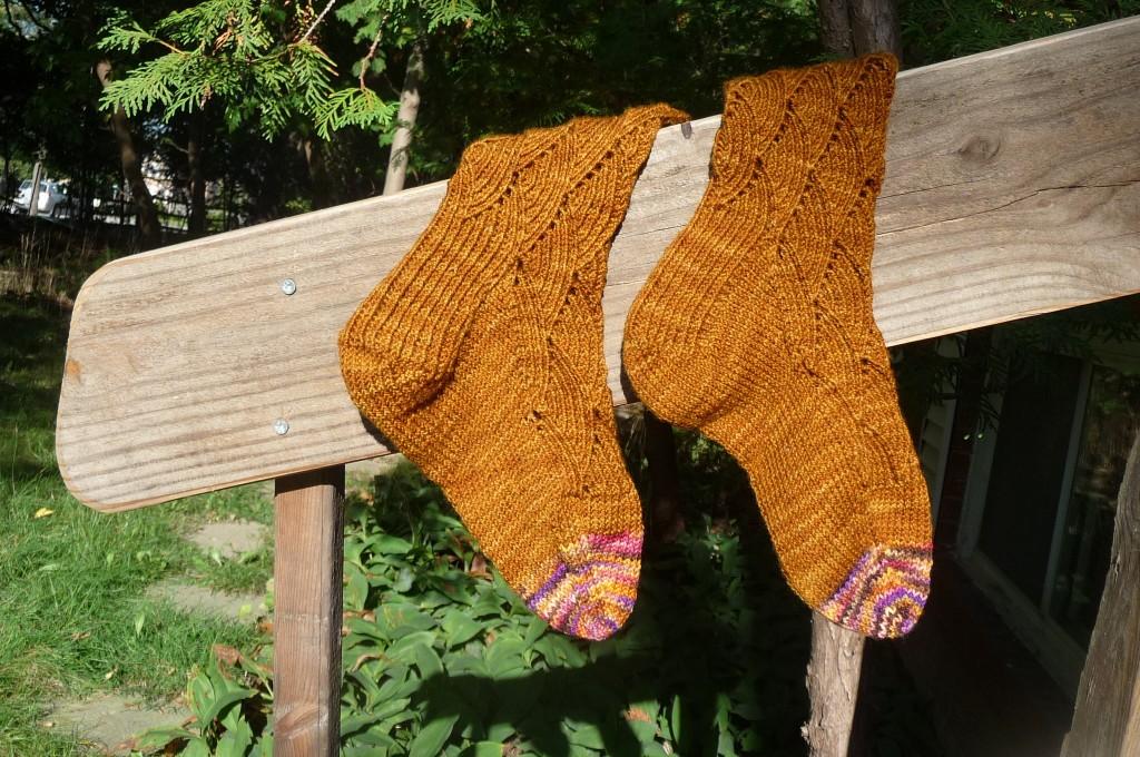 Pomatomus socks