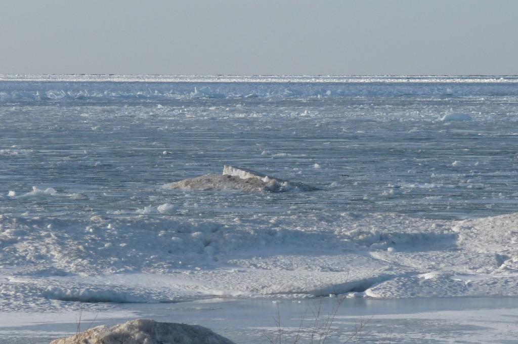 frozen bay